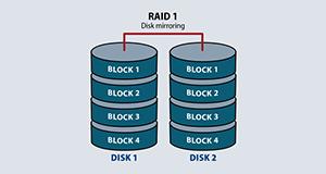 RAID 1 Array